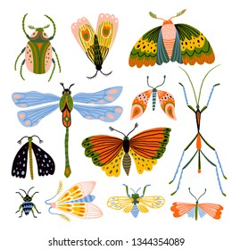 Collection of insects. Butterflies, dragonflies and beetles isolated in the white background. Decorative design elements.
