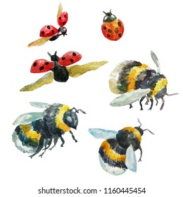 Collection of unique hand drawn watercolor bumblebees and ladybugs on white background. Elements for your design.