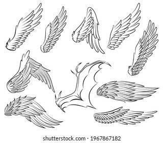 Collection of vintage heraldic wings sketch. Monochrome stylized birds wings. Hand drawn contoured stiker wing in open position. Design elements in coloring style