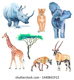 Collection watercolor African animals of Africa elephant, rhinoceros, hyena, lion, giraffe, antelope and tree.
