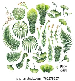 Collection of watercolor prehistoric plants isolated on white background