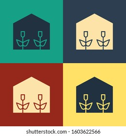 Color Home greenhouse and plants icon isolated on color background. Vintage style drawing.