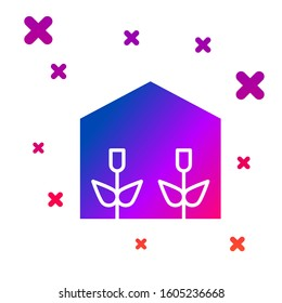 Color Home greenhouse and plants icon isolated on white background. Gradient random dynamic shapes.
