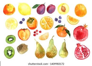 Color sketch of fruit. Lemons, orange, tangerines, persimmon, pomegranate, pears, kiwi, plums, peach, berries painted with watercolor on a white background. A colored sketch of fruits. Food picture.