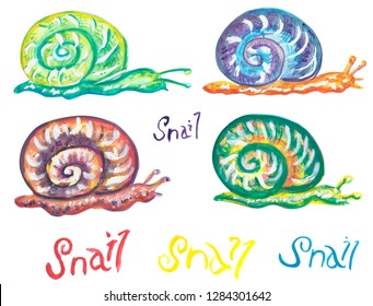 Color snails on white isolated background. Hand drawing watercolor illustration. Lettering Snail.