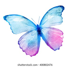 Color watercolor butterfly, isolated on white background