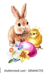 Oeuf de Pâques coloré, joli lapin et petit poulet. Illustration à l'aquarelle dessinée à la main, isolée sur fond blanc