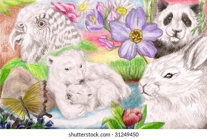 Colored Pencil Sketch of a collection of several types of animals in natural scenes