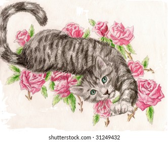 Colored Pencil Sketch of a collection of a tabby rose cat