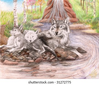 Colored Pencil Sketch of a family of wolves sitting by a dirty stream with a few trees and grass in the background.
