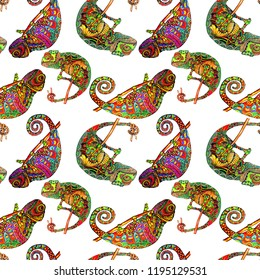 Colored zentangle chameleon seamless pattern. Doodle exotic wild animal. Abstract lizzard.  image of reptile isolated on white background