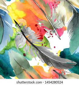 Colorful bird feather from wing. Watercolor illustration set