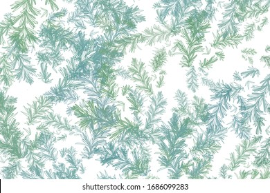 Colorful botanical illustration background. Leaf wallpaper