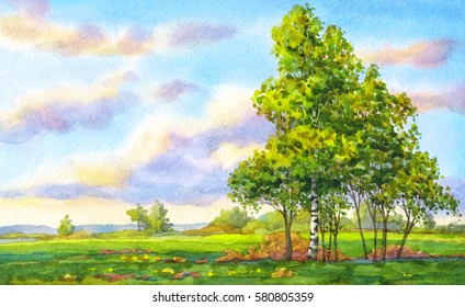Colorful bright hand drawn watercolour sketch drawing on paper backdrop with space for text on glowing heaven. Quiet gentle romantic springtime daybreak scene. Young Betulas in hayfield
