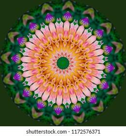 Colorful, brown, white, green, orange mandala with geometric spiral pattern on dark green background. Decorative element, ethnic design, web design, anti-stress therapy, meditation.