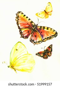 Colorful butterflies separate on white background.Picture I have created myself with watercolors.