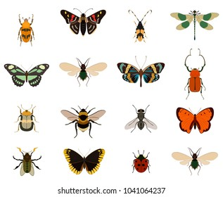 Colorful butterfly and bug collection isolated on white background illustration. Swallowtail, ladybug, cockchafer, beetle, swallowtail, dragonfly, fly, bee, bumblebee, cockroach. Insect symbols