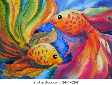 colorful couple goldfish watercolor painting on paper
