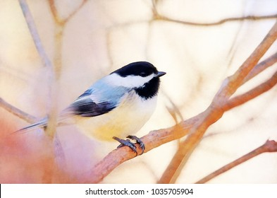 Colorful digital painting of a black capped chickadee perched on a branch