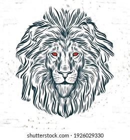 Colorful face of a lion illustration,Digital illustration, animal head with white background.