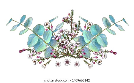 Colorful floral bouquet composition. Waxflowers branches and silver stringybark leaves. Element for invitations, greeting cards, covers
