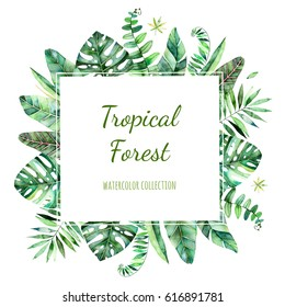 Colorful floral frame with colorful tropical leaves. Tropical forest collection.Perfect for wedding,frame,quotes,pattern,greeting card,logo,invitations,lettering etc