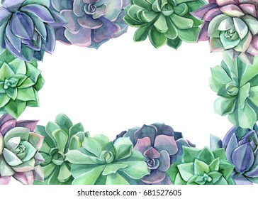 Colorful floral frame. Watercolor succulents. Perfect for wedding,frame,quotes,pattern,greeting card,logo,invitations.