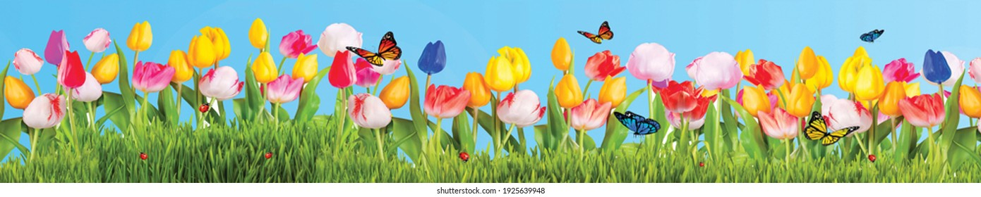 Colorful flowers grass and butterflies blue background