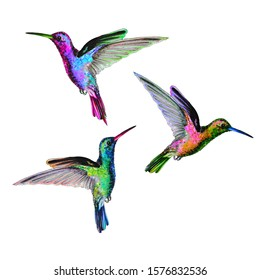 Colorful hummingbirds are flying.Marker and watercolor hand drawn illustration with little birds. Hummingbirds in isolated white background.