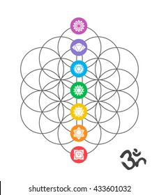 Colorful icons, main chakras on flower of life. Sacred geometry illustration with handmade om calligraphy decoration.