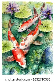 Colorful koi fishes swimming in pond. Hand drawn watercolor picture. Three Golden fishes family. Beautiful nature scene - illustration