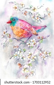 Colorful pink bird on branch with cherry blooming flowers watercolor hand drawn  illustration. Hand drawn watercolor. For greeting card,  invitation, background, design.