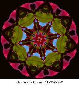 Colorful, red, green, blue mandala with geometric floral pattern on dark background. Decorative element, ethnic design, web design, anti-stress therapy, meditation, holiday.