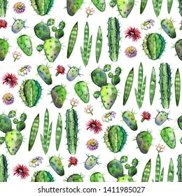 Colorful Seamless pattern with succulents plants, branches and flowers. Perfect for your project, greeting card,packaging,wallpaper,pattern,texture,cover