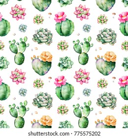 Colorful Seamless pattern with succulents plants, pebble stones,branches and more.Perfect for your project,wedding,greeting card,packaging,wallpaper,pattern,texture,cover