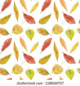 Colorful seamless pattern with watercolor autumn leaves on white background.