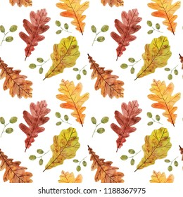 Colorful seamless pattern with watercolor autumn oak leaves on white background.