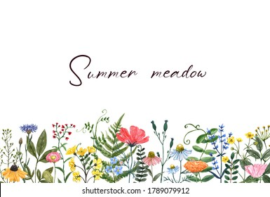 Colorful summer meadow illustration. Watercolor wildflowers border. Horizontal frame for banners, cards, invitations. Cute and pretty flowers, grass, wild herbs on white background.
