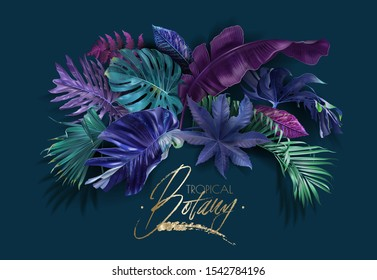 Colorful tropical leaves arrangement on dark background. Exotic botanical design for cosmetics, spa, perfume, beauty salon, travel agency, florist shop. Best as packaging design