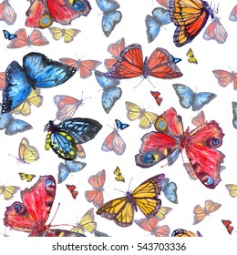 Colorful watercolor butterfly fly on a white backdrop pattern seamless. Watercolor painting texture beauty butterflies in paradise for floral design fashion hand drawn illustration.