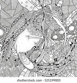 Coloring Book Page For Adult And Children Fantastical Bird Amazing Sunbird With