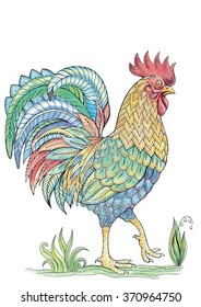 Coloring cock, rooster with a beautiful tail