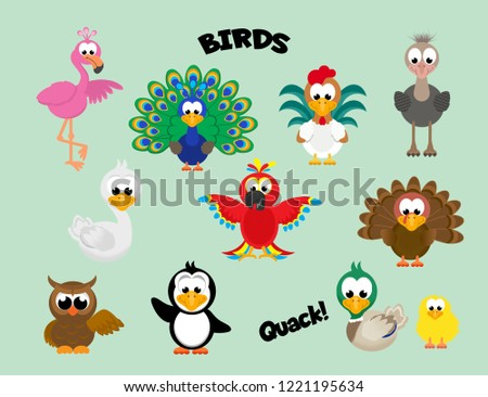 Colourful set of cartoon birds including a flamingo, peacock, rooster, ostrich, swan, parrot, turkey, owl penguin, mallard duck, and baby chick.