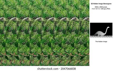 Comparison 3D Hidden Image Stereogram Illusion