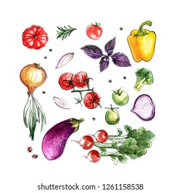 Composition of different vegetables painted with watercolor on a white background. Eggplant, onion, pepper, tomatoes, greens. A colored sketch of vegetables with mascara and paint. Farm products.