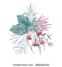 Composition with elements of Australian nature. Isolated on a white background. Watercolor illustration