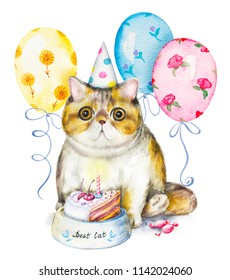 Composition with exotic cat in cap, bowl with cake, candies and flying balloons. Watercolor pencils illustration isolated on white background