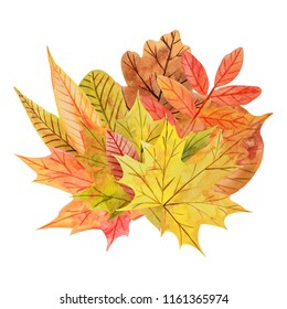 Composition with multicolored watercolor autumn leaves on a white background