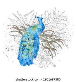 Composition with peacock and Indian decor. Isolated on a white background. Watercolor illustration