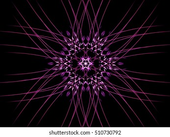 Computer fractal decorative colorful floral pattern on a black background